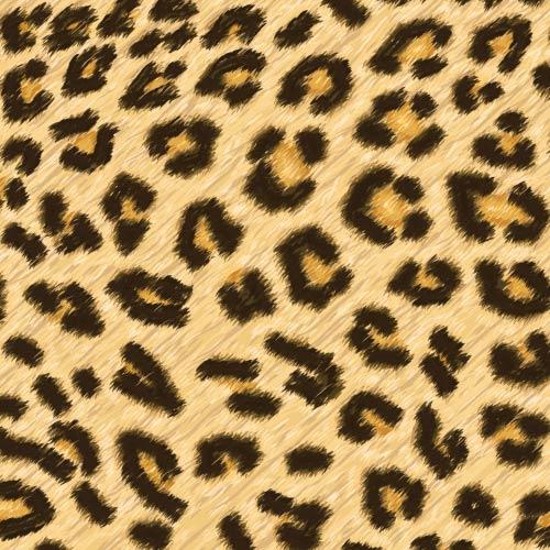 leopard-spots-print-
